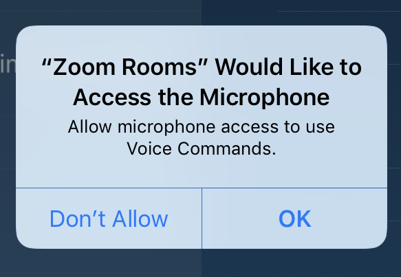 Zoom voice commands